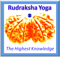 The Logo of Rudraksha Yoga